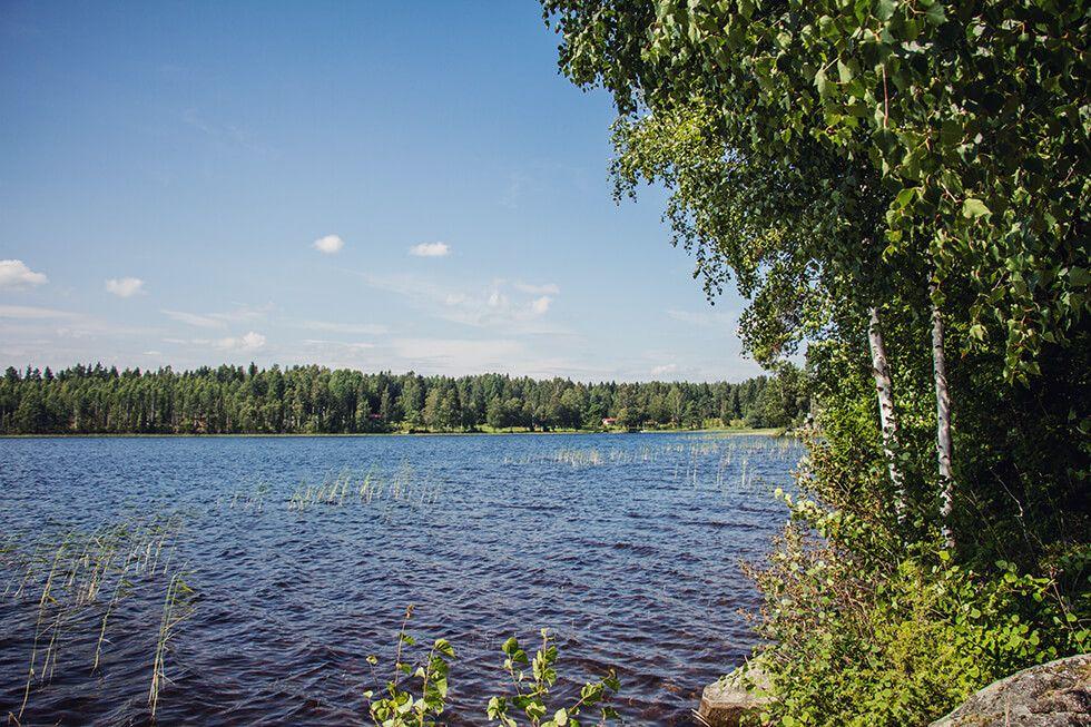 Sommarkväll i juli, svensk sommar