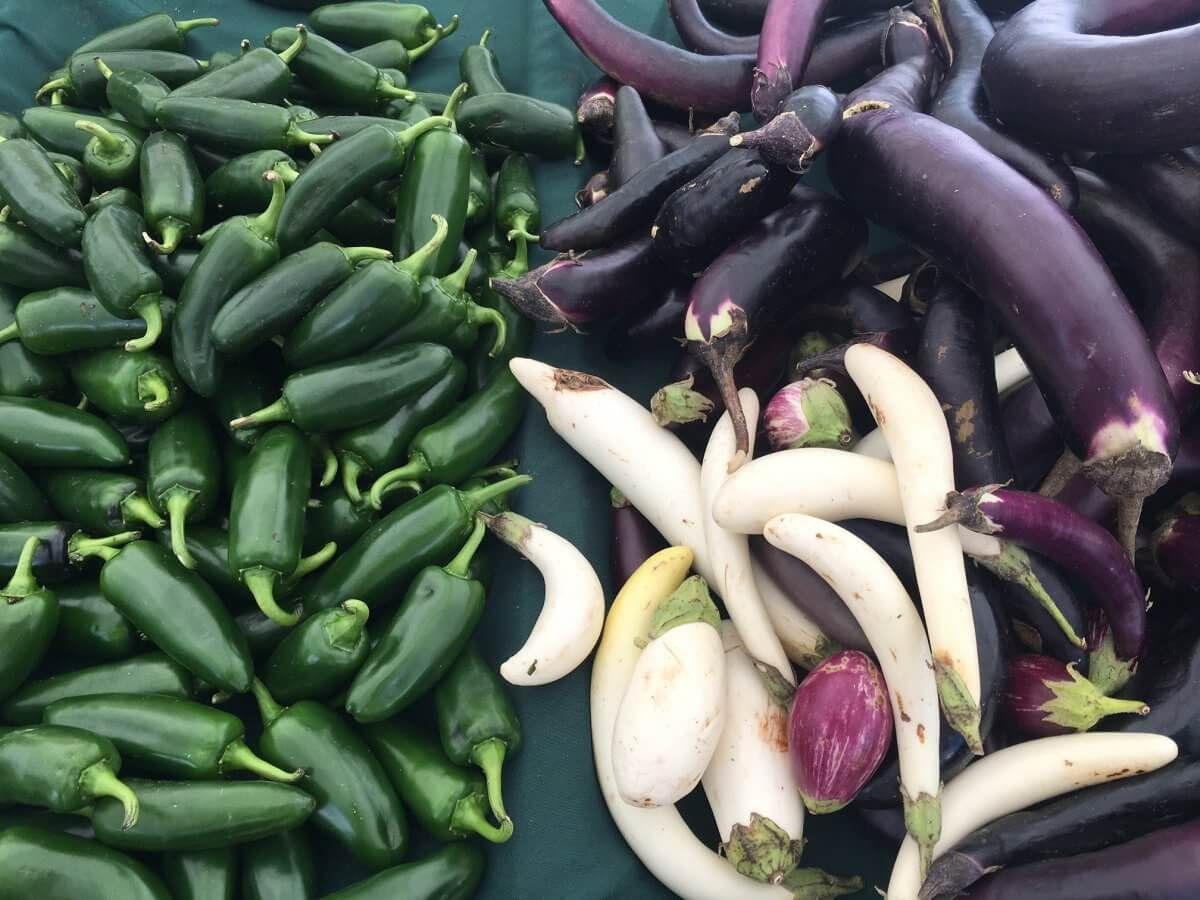 malibu farmers market yums
