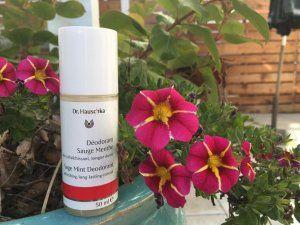 dr.-hauschka-deodorant-sage-mint-1024x768